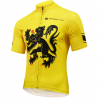 maillot vélo flandres cyclisme lion