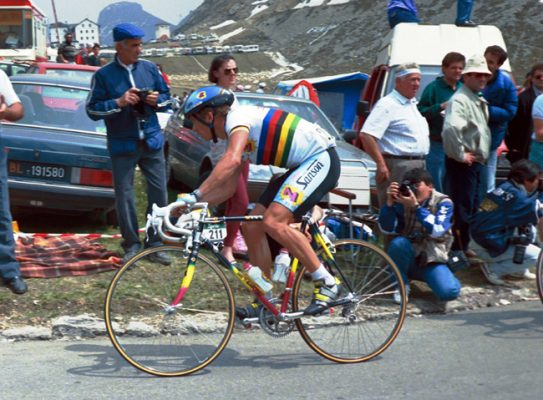 maillot z team greg lemond blanc